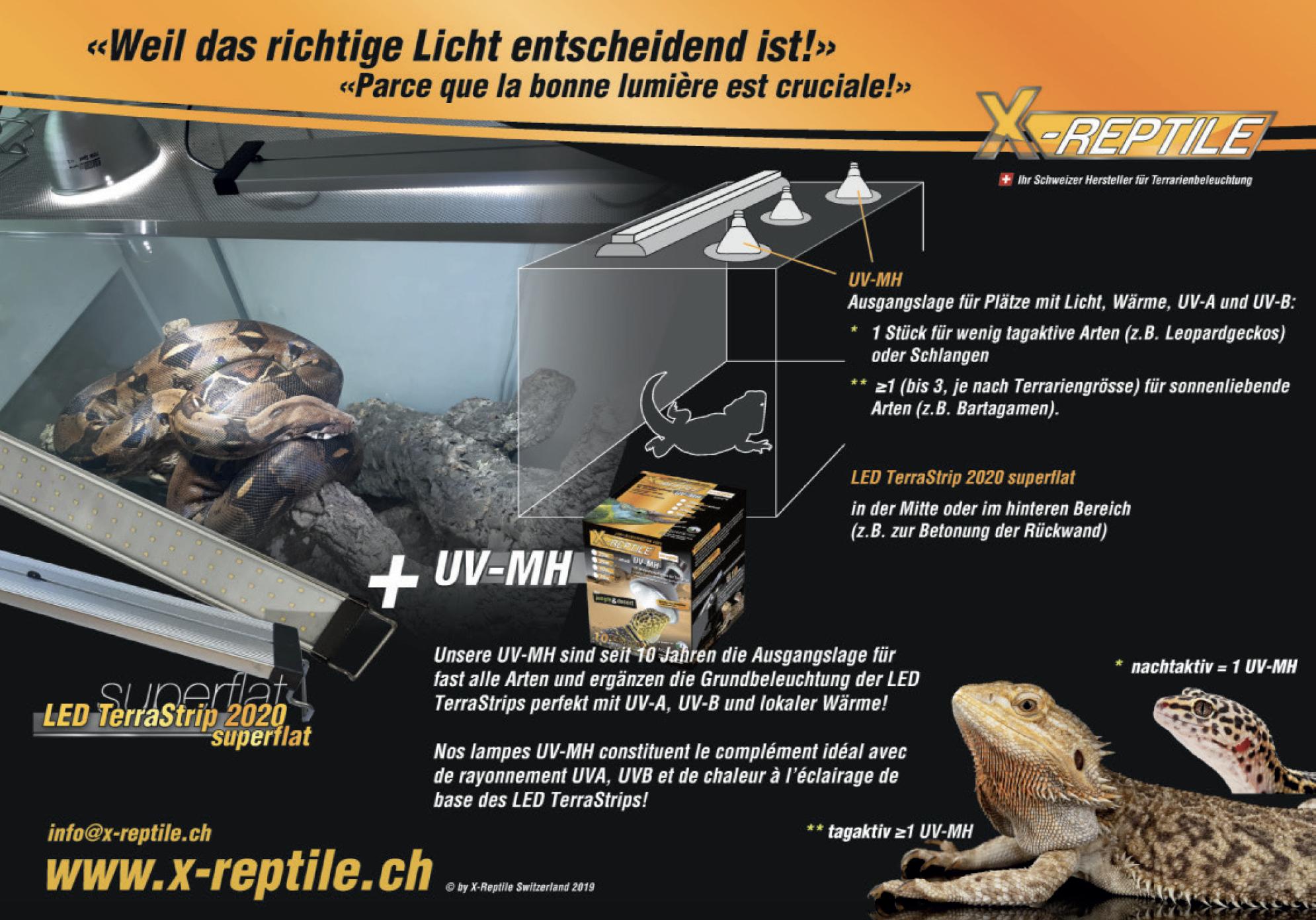 LED_superflatR%C3%BCckseite.png